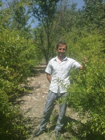 Ihromiddin