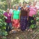 La Cañada Luz 2 Group