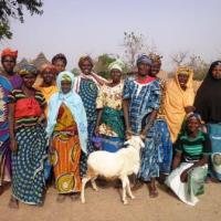 Sabali Ii Group