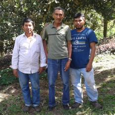 Gs. Brisas De San Juan Group