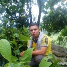 Lelio Andres
