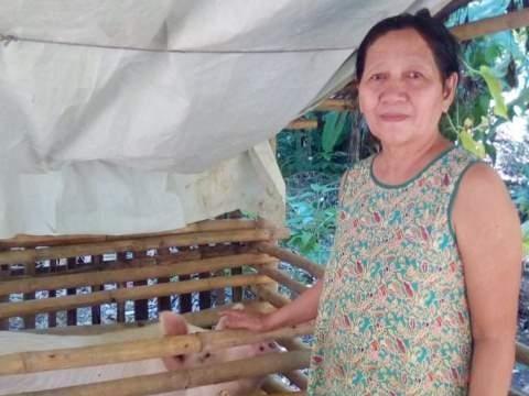 photo of Prondelita