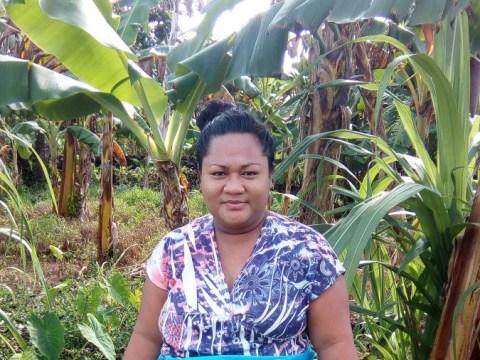photo of Vitolia