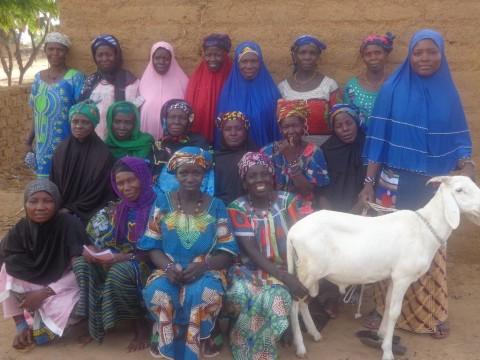 photo of Amakene B Group