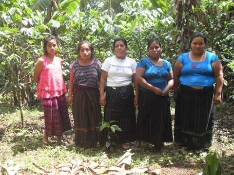photo of Pasac Agrícola Group