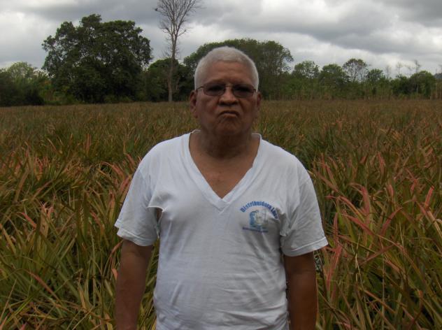 Pedro Ismael