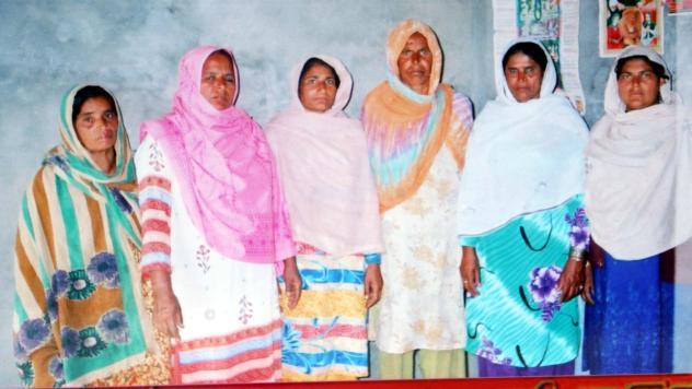 Shazia Kosar M. Jamil Group