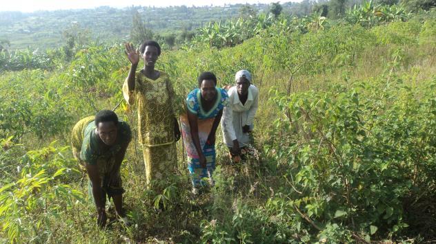 Twiyubake Rhh Group