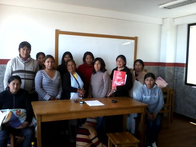 Yanaptasiñani Group