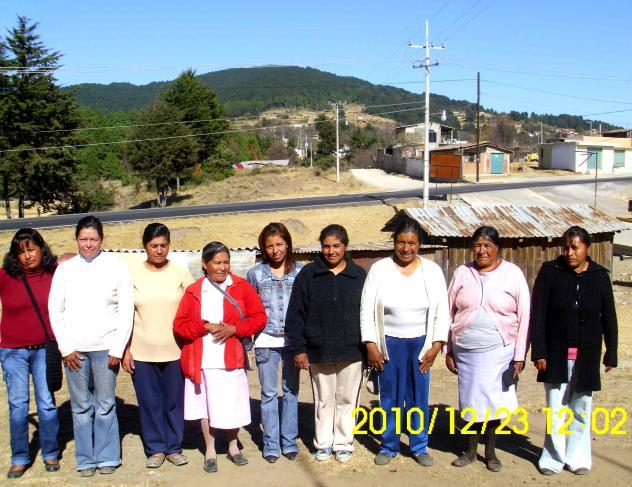 Los Alcatraces De Peña Group