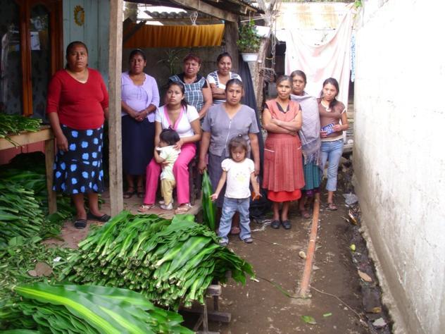 Anturios Blancos Group