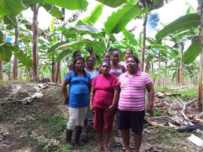 Banco Mujer Aracolpa Kañeblocke Añita Group